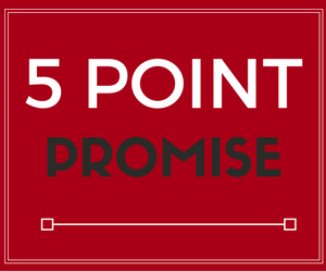 Metalcraft 5 Point Promise